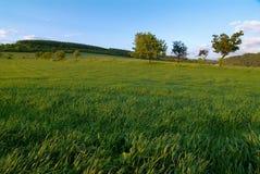 Landscape-3 Image libre de droits