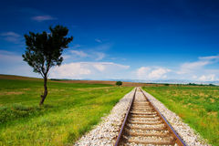 Landscape. Lonely tree with old railroad stock photo