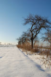 Landscape. Beautiful winter landscape #21 Royalty Free Stock Image