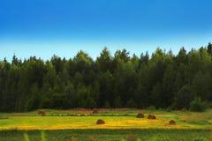 Landscape Stock Photography