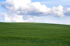 Landscape. Beautiful nature landscape for background Stock Photography
