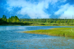 Landscape. Royalty Free Stock Photography
