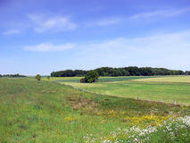 Landscape. With green fields, trees and blue sky. Polish country Royalty Free Stock Photo