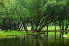 Free Landscape Stock Images - 5402884