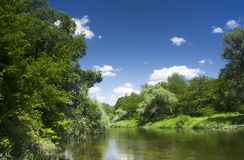 Landscape. Beautiful landscape with river and forest Stock Photography