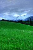 Landscape. With meadow and forest in a cloudy day Royalty Free Stock Photo