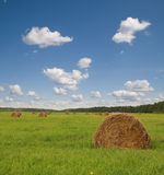 Landscape. With haystacks on green field and blue sky Royalty Free Stock Photo