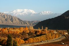 Landscape. With snow mountain and golden forest in south of Xinjiang, China Royalty Free Stock Images