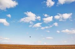 Landscape. In Bessarabia, Ukraine field Stock Images