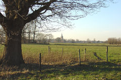 Landscape. Saved territory at Sint Oedenrode, named The Moerkuilen, in Holland Royalty Free Stock Photos