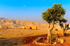 Landscape. Of Judea Mountains Near Dead Sea, Sunset Stock Photo