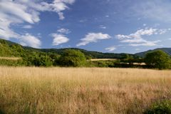 Landscape. From Rodopi Mountain Bulgaria Royalty Free Stock Photo
