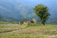 Landscape- Abandoned house at a valley down Western ghats. Abandoned house built with rock pieces and a tree near- A down valley landscape Western ghats, Idukki Stock Photography