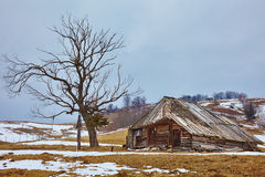 Landscape with abandoned wooden barn Royalty Free Stock Photography