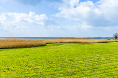 Landscape at the Achterwasser on the island of Usedom Stock Images