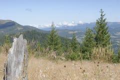 Landscape across field in Apuseni Mountains, Romania Stock Photography