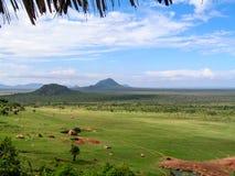 Landscape Afcrica. Landscape in Africa National Park Stock Photography