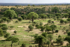 Landscape in Africa, Tanzania, Africa Stock Images