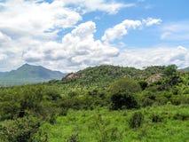 Landscape Africa. In Tsavo Nationalpark Stock Photo