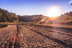 Landscape agricultural field arable land.  Royalty Free Stock Image