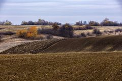 Landscape with an agricultural field. Ready for culture Stock Photography