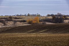 Landscape with an agricultural field. Ready for culture Royalty Free Stock Image