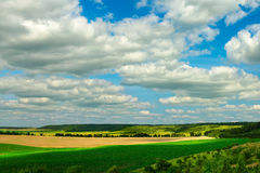 Landscape of agricultural fields Royalty Free Stock Image