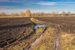 Landscape with agricultural fields and country road Stock Images
