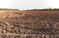 Landscape with agricultural land of plains, recently plowed and. Prepared for cultivation. With sunset light Royalty Free Stock Photography