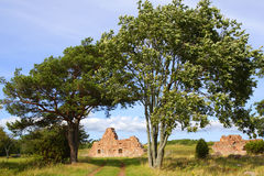Landscape in Aland Islands with fortress ruins. Stock Images