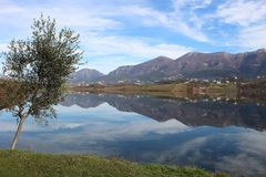 Landscape Albania lake trees awesome sky reflection mountain hills tree ablero park panorama Stock Photos