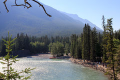 Landscape in Alberta Stock Photos