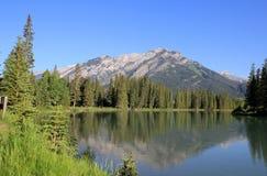 Landscape in Alberta Stock Image