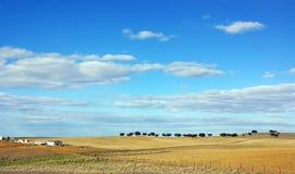 Landscape of alentejo farm Stock Images