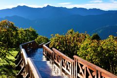 Landscape in Alishan Taiwan Stock Photos