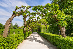 Landscape with Alley Park in the Wurzburg Residence Stock Photography
