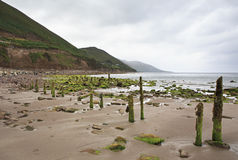 Landscape along the Atlantic Ocean. Stock Image