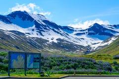 Landscape along the Eyjafjordur Royalty Free Stock Image