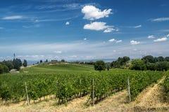 Landscape near San Gimignano Tuscany Stock Images