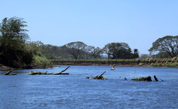 Landscape along the Tarcoles River Royalty Free Stock Images