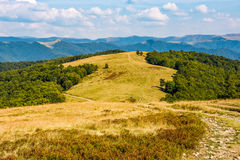 Landscape with alpine meadow and mountain ridge. Path through weathered grassy alpine meadow near the beech forest on top of a hill. gorgeous mountain ridge Stock Photos