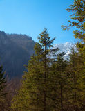 Landscape in the Alps Stock Photos