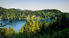 Landscape of Alpsee, Germany Royalty Free Stock Photo