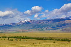 Landscape in Altai mountains Royalty Free Stock Photos