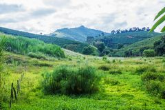 Landscape in Alto Jequitibá, Minas Gerais, Brasil. Rural area of Alto Jequitibá, State of Minas Gerais, Brazil. A rugged, agricultural region, 400 stock photography