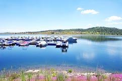 Landscape of Amieira marina Royalty Free Stock Images