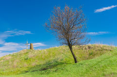 Landscape with ancient burial mound with cross and lonely apricot tree Stock Photo