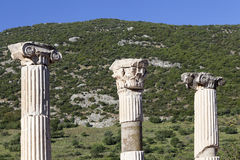 Landscape with ancient columns at Ephesus, Turkey Stock Images