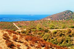 Free Landscape And Mediterranean Sea Teulada Cagliari Sardinia Royalty Free Stock Photography - 116951677