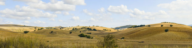 The landscape of Andalusia Stock Image